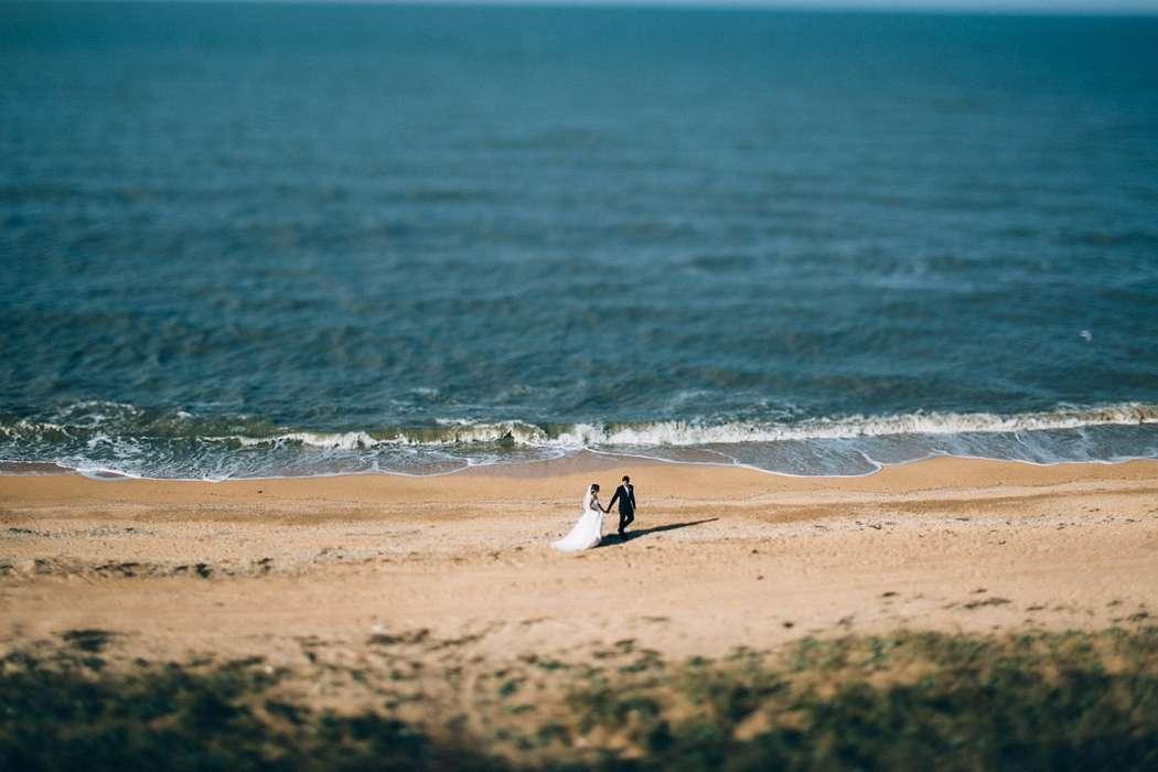 По песчаному побережью идут влюбленные, жених в черном костюме ведет за руку невесту в белом пышном платье и фате, позади них - фото 3046133 Bree