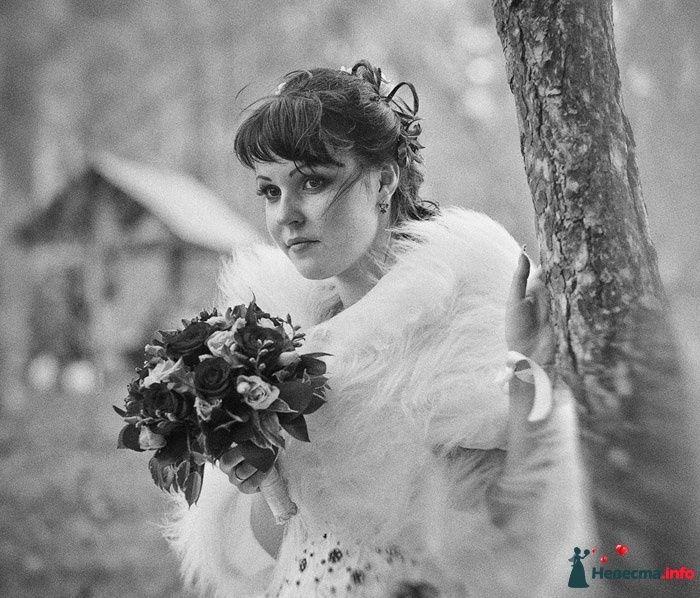 свадебные фотографы рыбинска оказалась оса