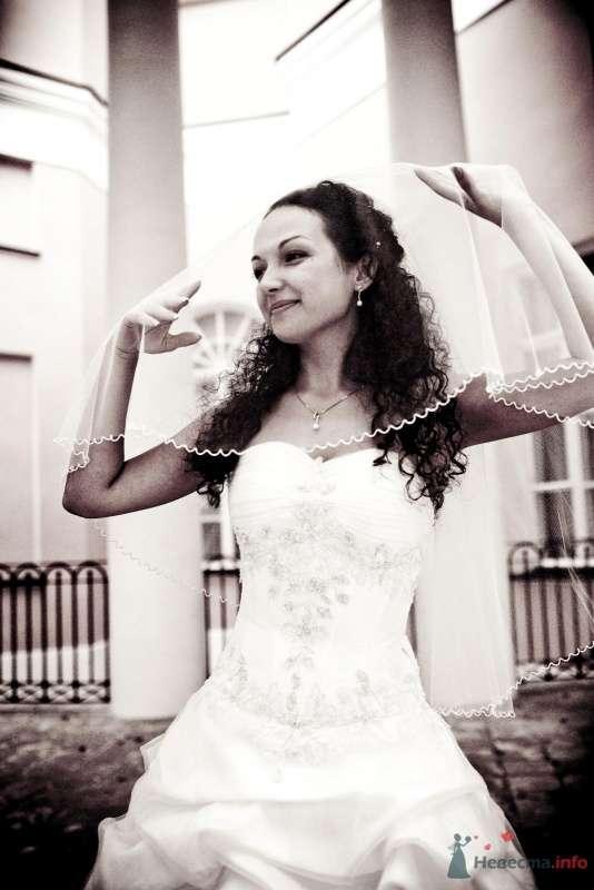 Фото 46651 в коллекции наша свадьба - Pantera25