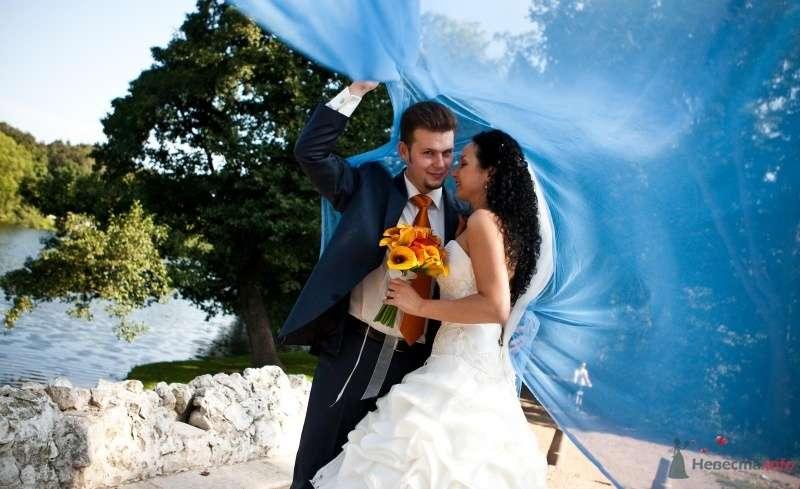 Фото 46675 в коллекции наша свадьба - Pantera25