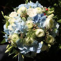 Букет невесты из голубой гортензии и белых ранункулюсов, эустомы, хамелациума и зелени