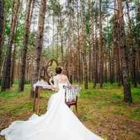 Утро невесты в сосновом лесу