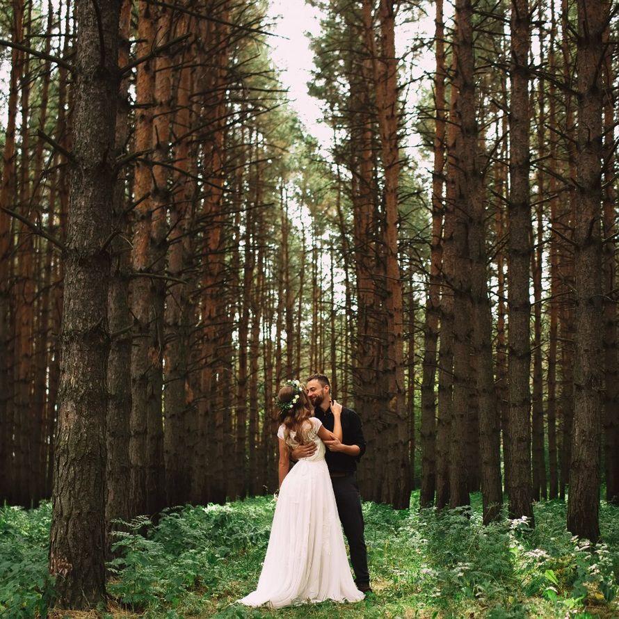 появляются вследствие свадебная фотосессия в сосновом лесу взлетная полоса
