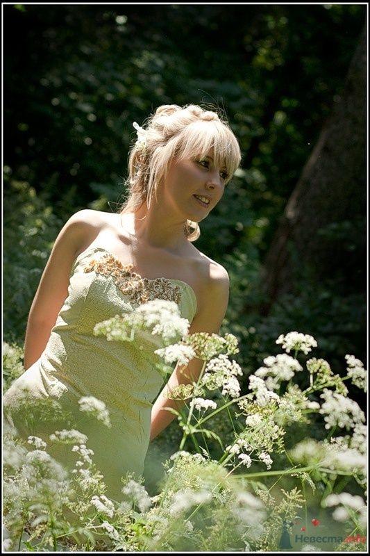Фото 33312 в коллекции Мои фотографии - tsarina