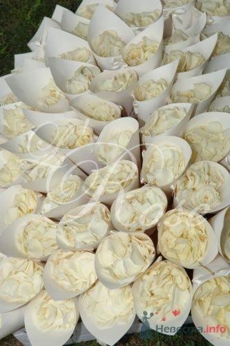 """Фото 17848 в коллекции Свадебные букеты, аксессуары - Галерея цветов """"L'Rose"""""""
