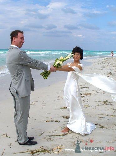 Фото 18081 в коллекции Свадьбы на Кубе - Невеста01