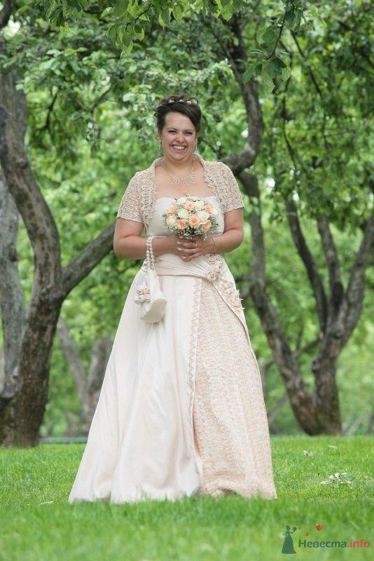 Фото 60355 в коллекции наша свадьба - вишинка