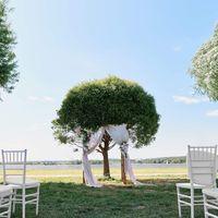 Свадьба Леши и Ани. Организация: Мария Захарова. Фото: Сергея Ломанова
