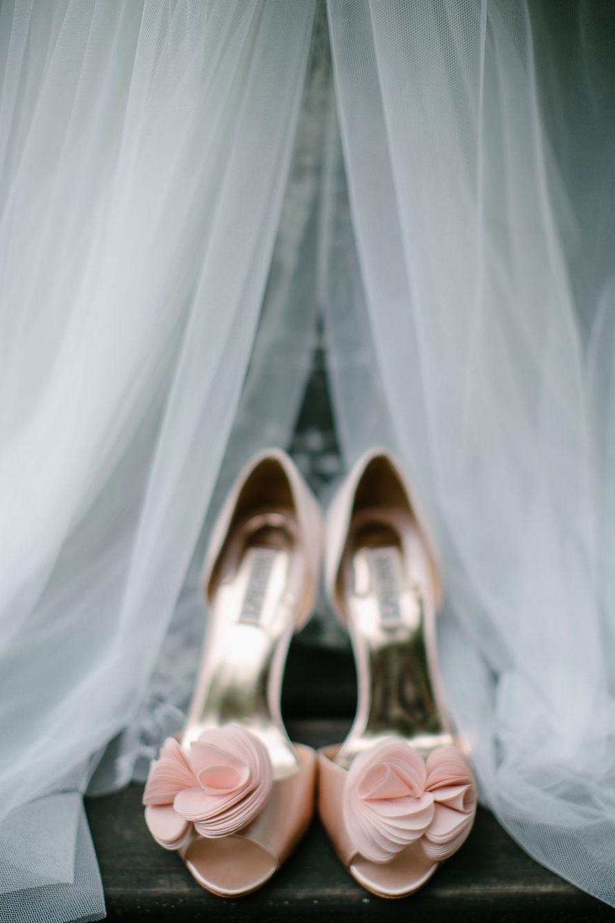 """Фото 17046076 в коллекции Свадьба Никиты и Екатерины 04.08.17 """"Ombre Wedding"""" - Студия декора и флористики Page of love"""
