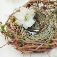 Гнёздышко с кольцами и нежным цветком
