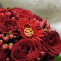 Красный букет невесты из гербер и роз и обручальные кольца