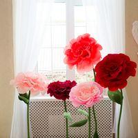 Цветы стоят уверенно, диаметр бутона 40-50 см