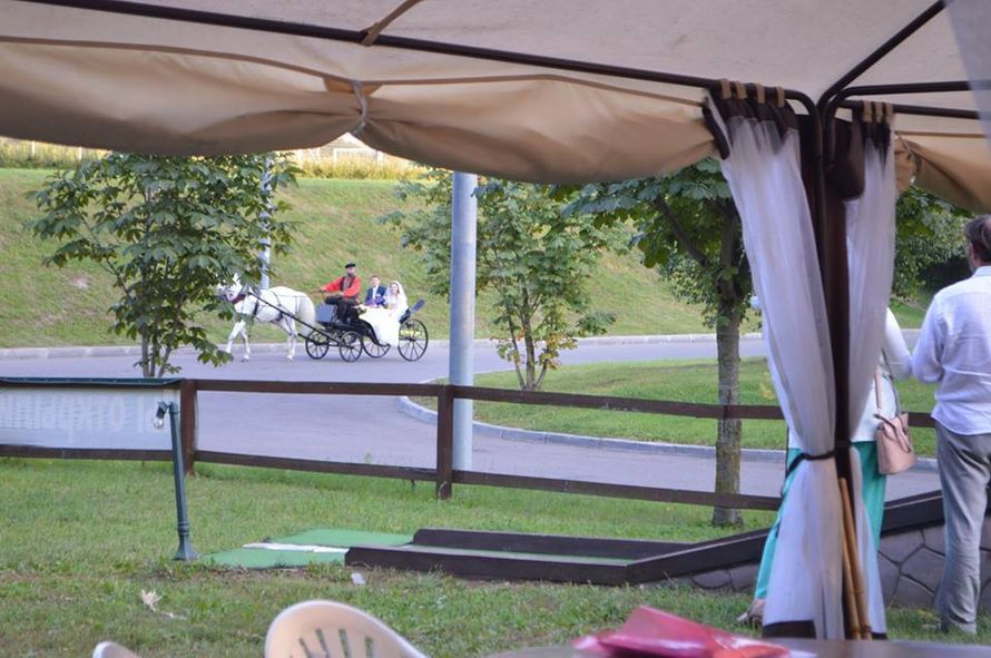 На подъезде к площадке, на лошадках))) - фото 7510826 Мелисса Флеминг - шатёр
