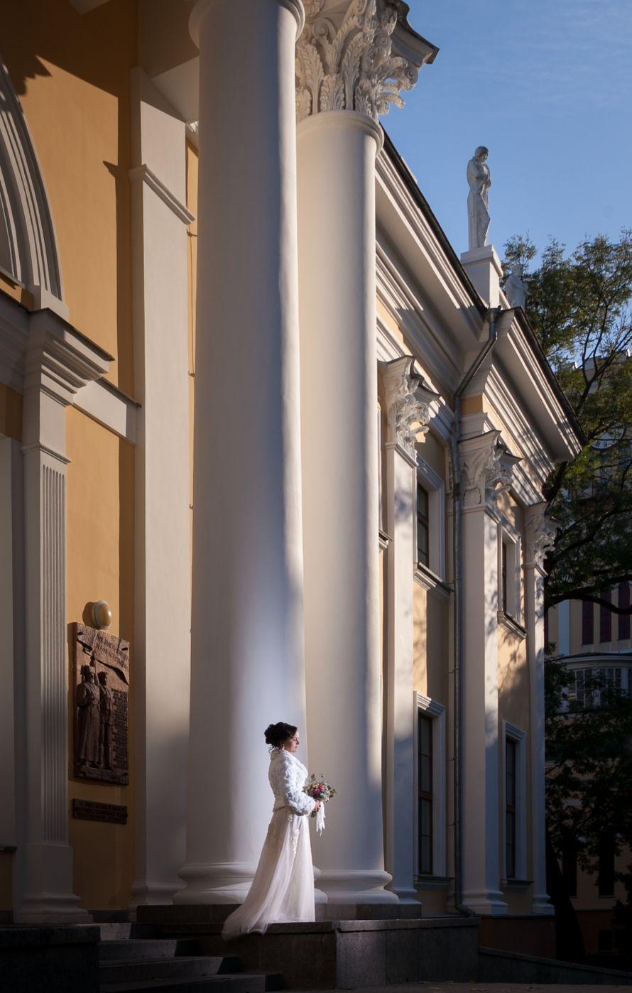 Фото 18979916 в коллекции Портфолио - Фотограф Александр Пушков