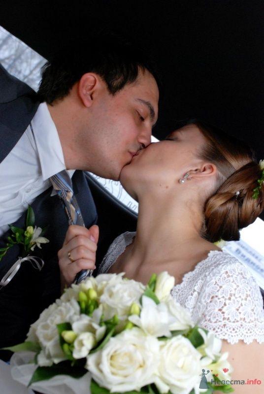 Поцелуй - фото 58565 toulin