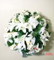 Букет из белых лилий - фото 17675 Невеста01