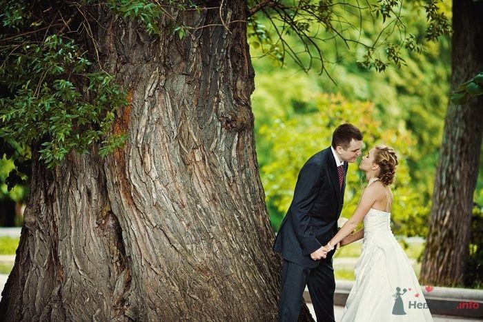 Жених и невеста, взявшись за руки, стоят возле огромного дерева - фото 40432 Starr
