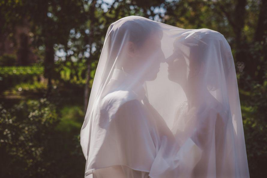 Фото 3267549 в коллекции Свежая и сочно-зелёная свадьба Андрея и Ирины - Фотограф Демьянова Илона