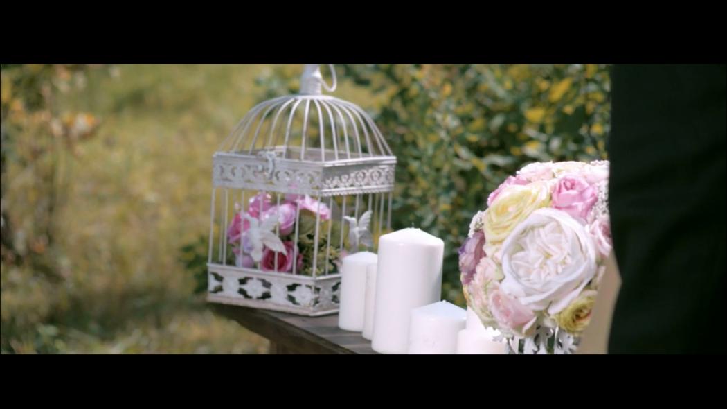 Дима и Алиса | Wedding highlights - фото 3261813 ArtVi Видеосъемка