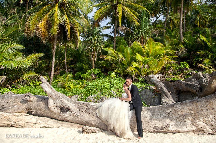 На побережье на поваленном дереве сидят молодожены, жених в черном костюме держит за талию невесту в открытом белом платье, она - фото 3302291 Видеостудия Karkade studio