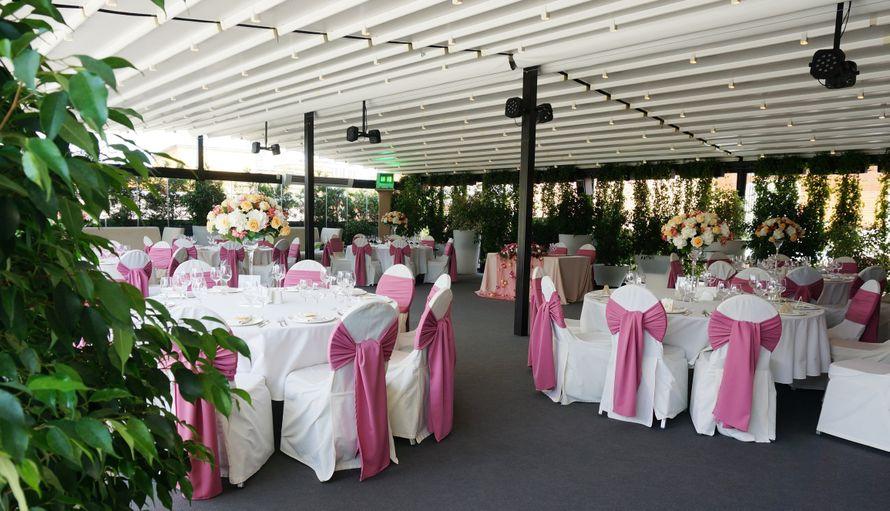 Места проведения свадеб