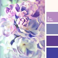 Фиолетовая палитра.