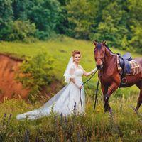 Свадебная фотосессия на природе с лошадью