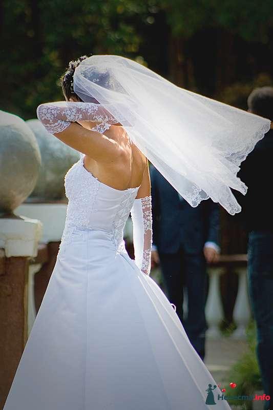 Фото 210709 в коллекции Фотографии со свадеб - Портрет-холл. Студия фотопортрета.