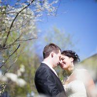 весенняя свадьба, цветущие сады, вишня, весна