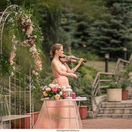 Скрипка соло на выездную регистрацию
