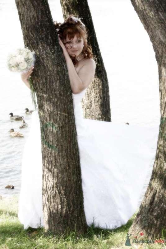 Фото 58868 в коллекции Наша свадьба - nessa2004