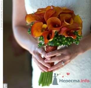 Фото 23514 в коллекции идеи для свадьбы - Вишневое море