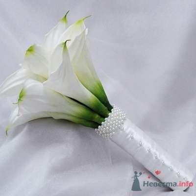 Фото 30820 в коллекции идеи для свадьбы - Вишневое море