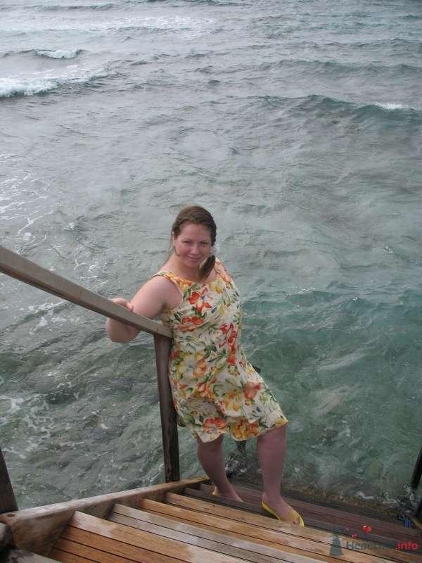 А кругом только океан... - фото 37890 Kitana