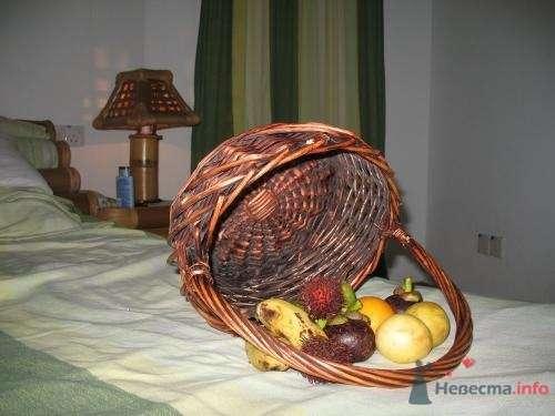 Фото 39736 в коллекции Медовый месяц на Мальдивах - Kitana