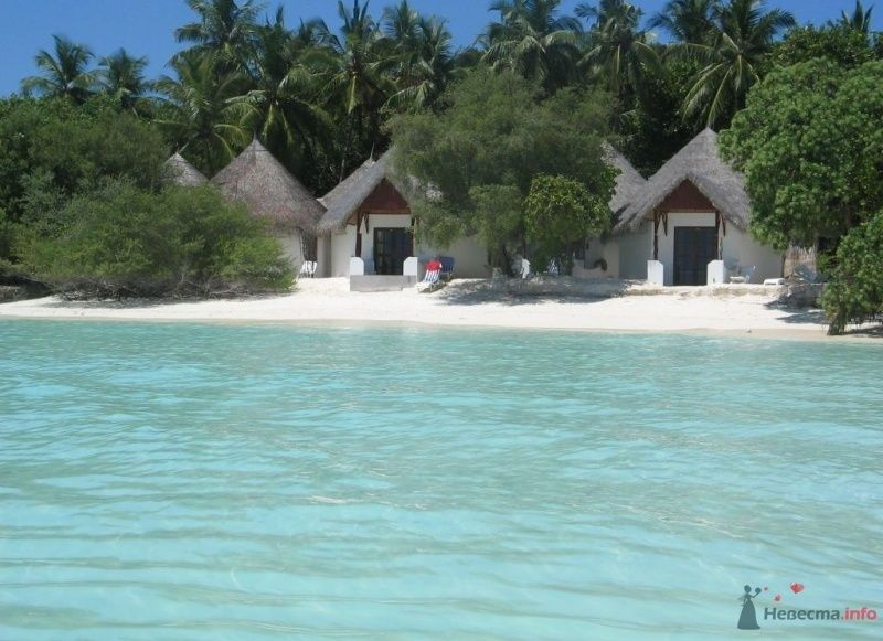 Фото 39739 в коллекции Медовый месяц на Мальдивах - Kitana