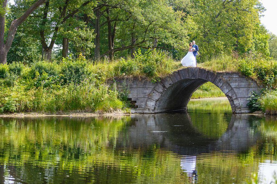 Жених и невеста стоят, прислонившись друг к другу, на мосте у реки - фото 3650353 Фотограф Дмитрий Мельников
