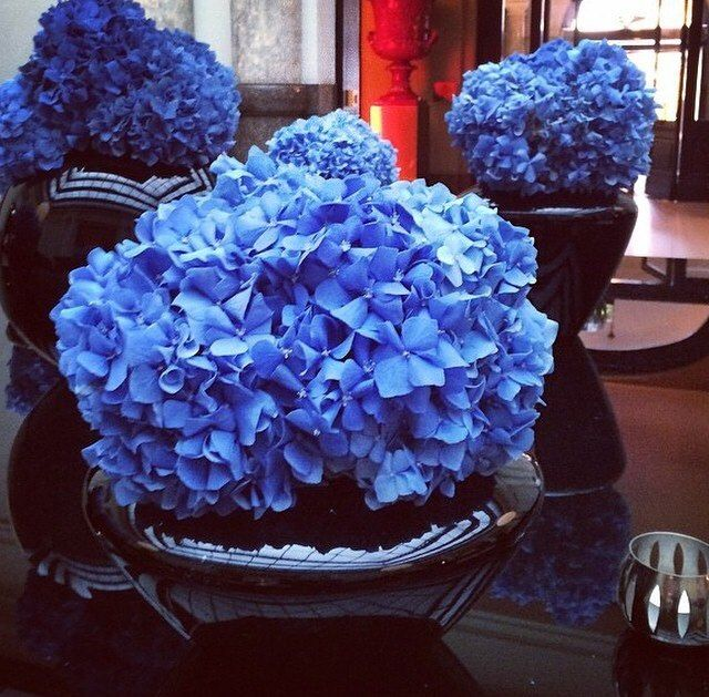 Фото 3665629 в коллекции  - Ателье цветов FlowersMaslik