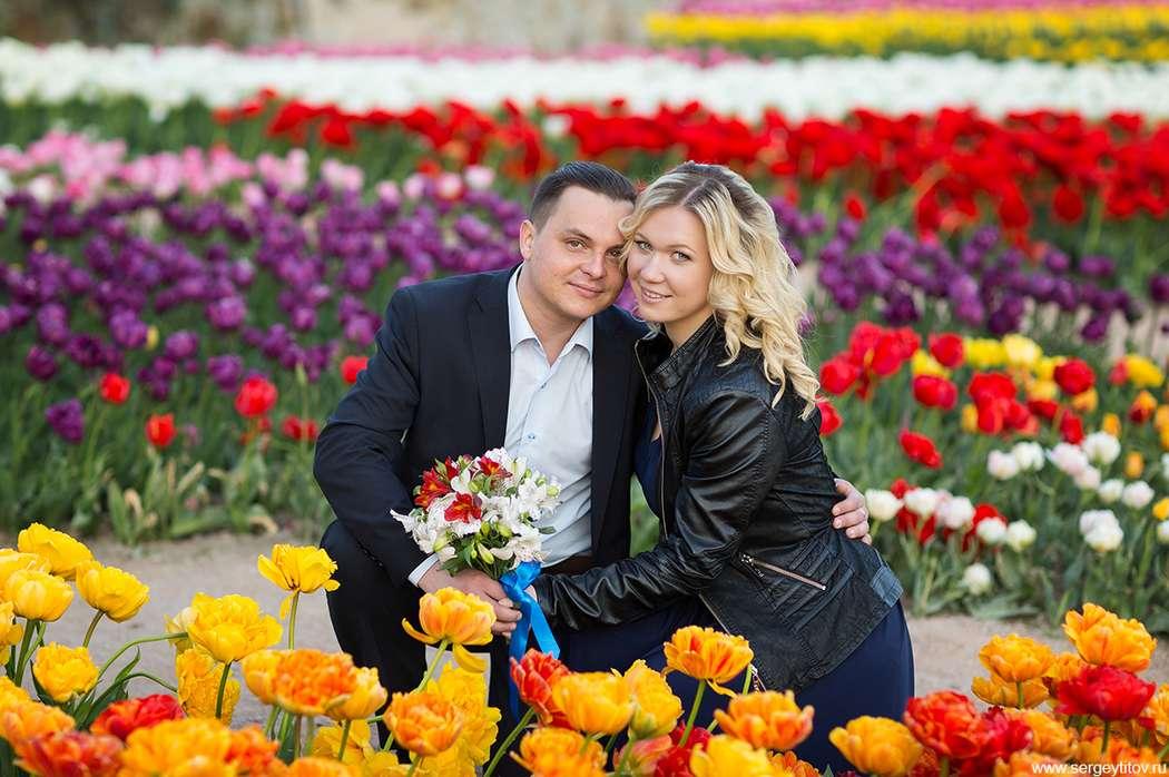 Фото 15481518 в коллекции Свадебные - Фотограф Сергей Титов