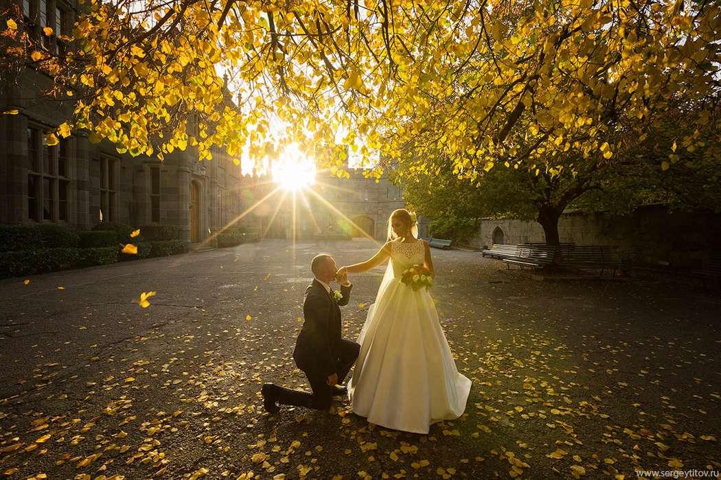 Фото 16778524 в коллекции Свадебные - Фотограф Сергей Титов