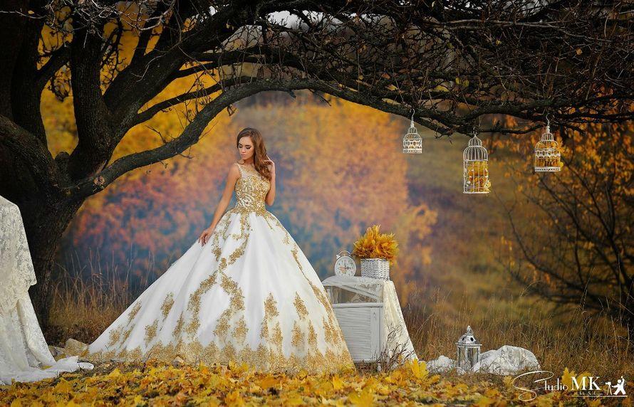 Фото 10711272 в коллекции фотоЗВІТИ - Фотограф Михайло Крилюк