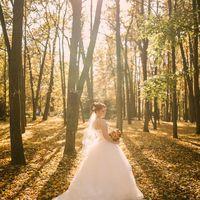 Золотая осень. Свадьба в сентябре. Оранжевая свадьба.