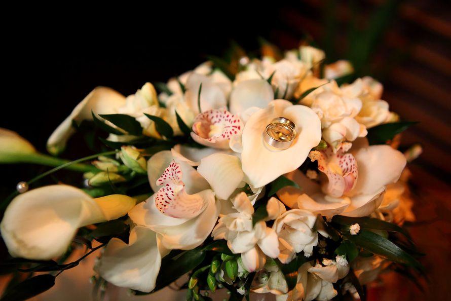 Фото 10567418 в коллекции Портфолио - DreamLook Wedding Photography