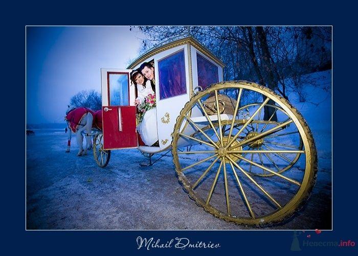 """Фото 32007 в коллекции Мои фотографии - Свадебная компания """"KST"""""""