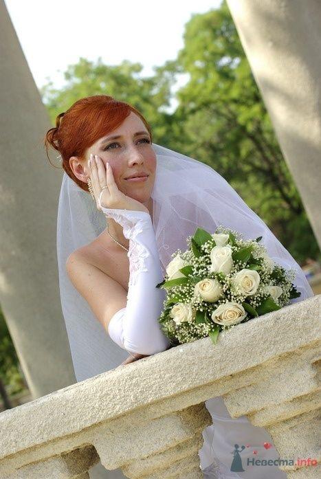Фото 35306 в коллекции Наша свадьба - Катринка@Leopardik