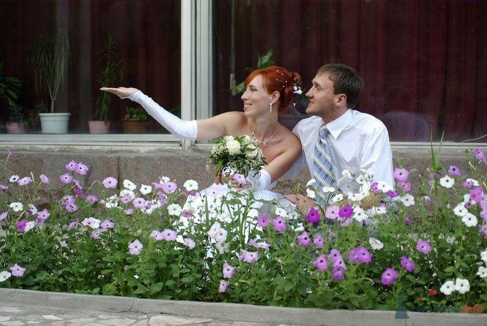 Фото 35345 в коллекции Наша свадьба - Катринка@Leopardik