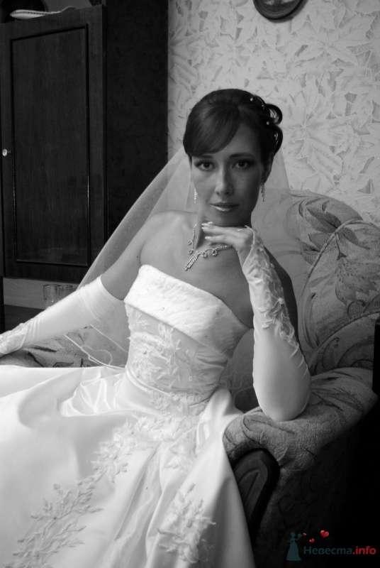Фото 35354 в коллекции Наша свадьба - Катринка@Leopardik
