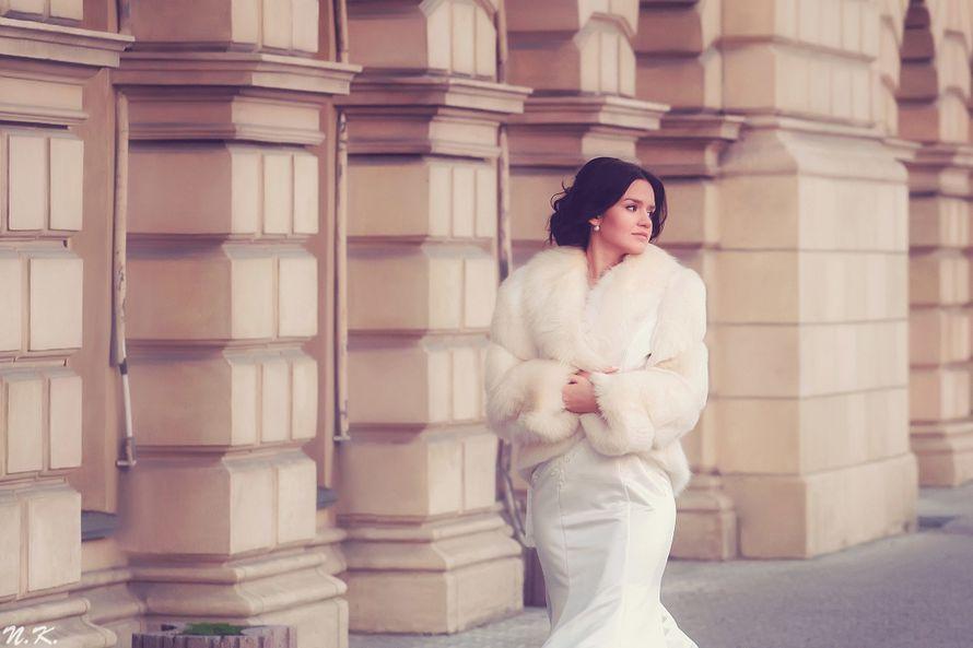 Фото 10312922 в коллекции Портфолио - Фотограф Наталья Козленкова