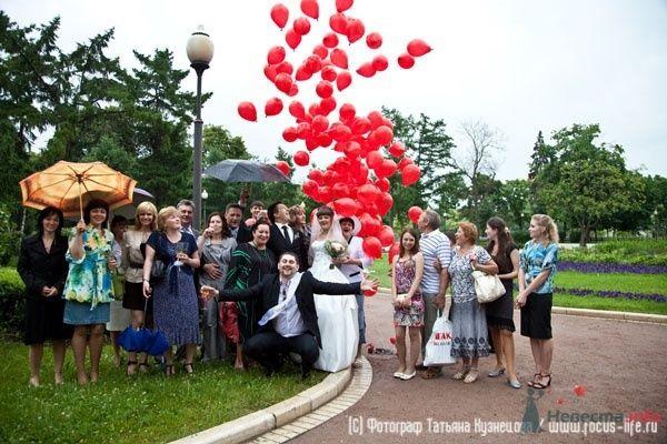 Фото 33555 в коллекции Свадьба Полины и Вадима - Свадебный фотограф Татьяна Кузнецова