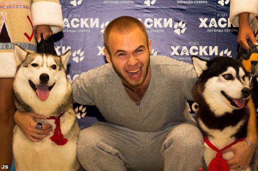 Фото 5474743 в коллекции Фото сессия с собаками - Праздничное агенство Event Art